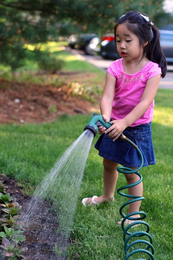 Child watering a garden yet to bloom.