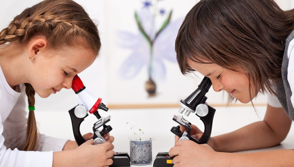 Two girls using microscopes, a fun way to get more girls involved in STEM
